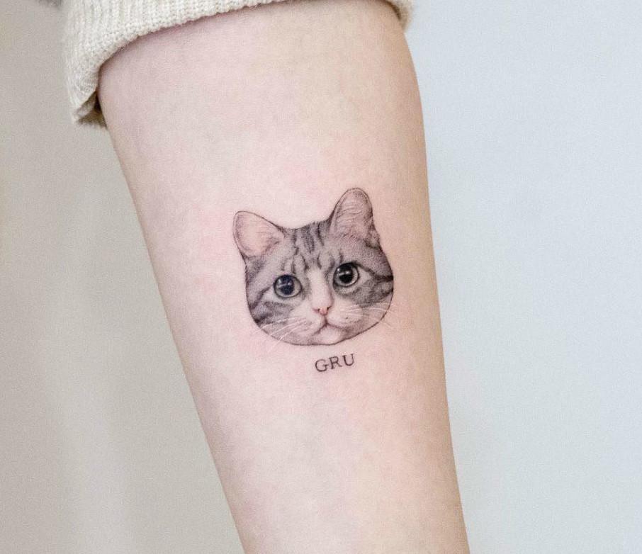 تاتو بدن ، تاتو گربه ، تاتو کار غرب تهران